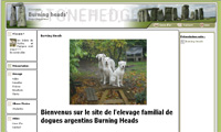 Burning heads chiens de france